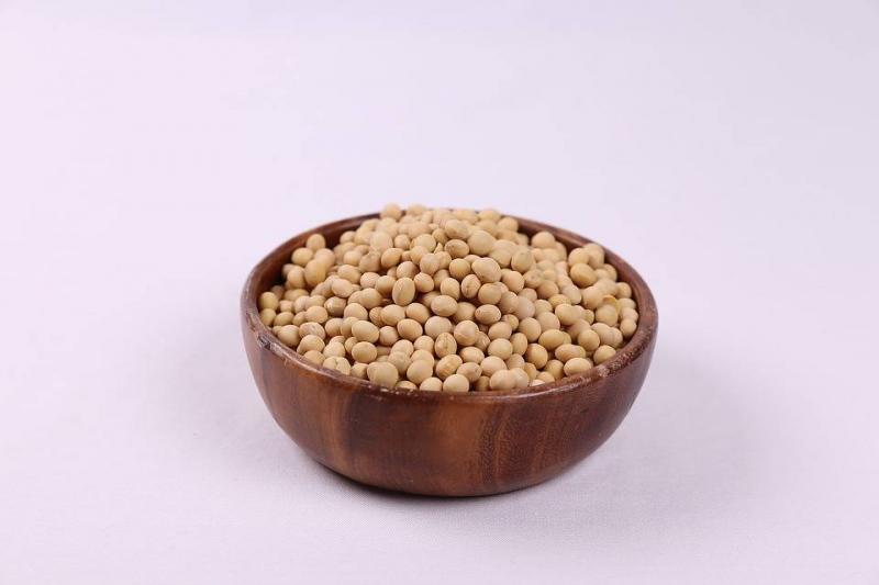 吃豆制品会心脏早博合理饮食不传谣
